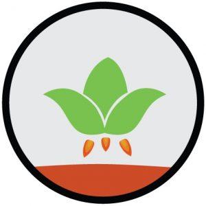 LettuceonMars-logo