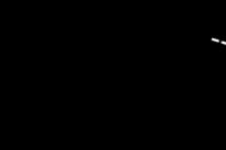 ssea_logo